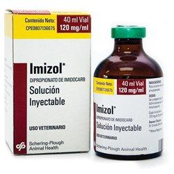 Resultado de imagen para imizol